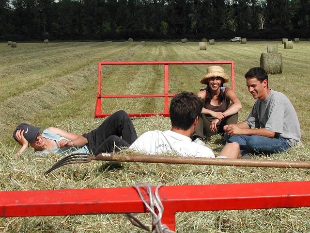 Mladí lidé sedící na voze se senem a povídající si o zemědělství
